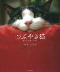 つぶやき猫