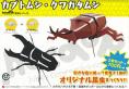 昆虫シリーズ カブトムシ・クワガタムシ