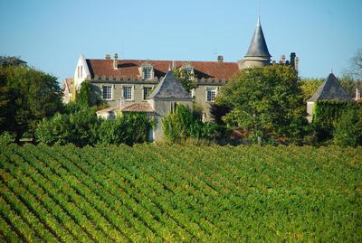 Vignobles Despagne (43).JPG